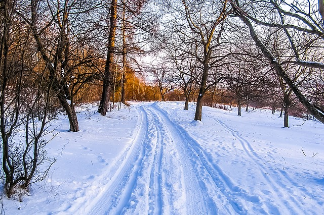 winter-891690_640