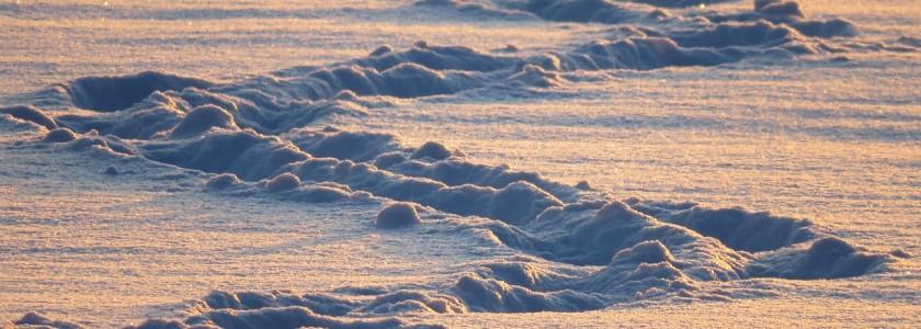 snow-lane-81156_1280